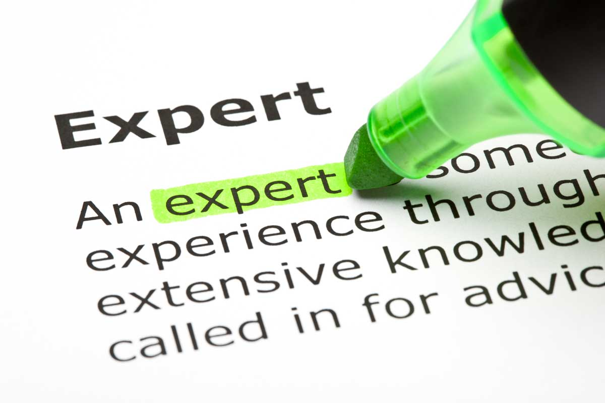 Expert - Dictionary Definition
